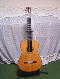 GSTorres1
