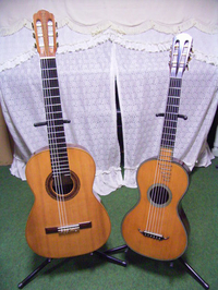 RIMG0235